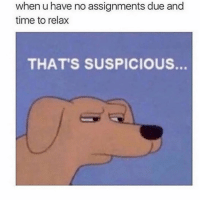 Funny, Time, and Right: when u have no assignments due and  time to relax  THAT'S SUSPICIOUS. Something is not right 🤔