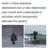 Memes, Apathy, and 🤖: when u have seasonal  depression but ur also depressed  year round and uparticipate in  activities which temporarily  alleviate the apathy FOLLOW (@pablopiqasso) FOR MORE FUNNY MEMES