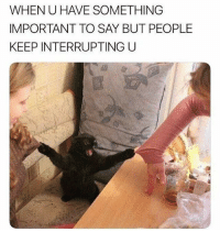 Memes, 🤖, and When U: WHEN U HAVE SOMETHING  IMPORTANT TO SAY BUT PEOPLE  KEEP INTERRUPTING U LISTEN!! 😾 @_thequeenofeverything_ @_thequeenofeverything_ @_thequeenofeverything_