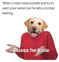 Funny, Lol, and Guess: When u hear noise outside and try to  warn your owner but he tells u to stop  barking  Guess he'll die Bye lol @masipopal