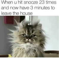 House, Now, and Times: When u hit snooze 23 times  and now have 3 minutes to  leave the house