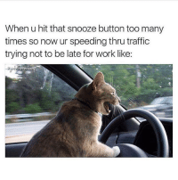Friday, It's Friday, and Memes: When u hit that snooze button too many  times so now ur speeding thru traffic  trying not to be late for work like: Is it Friday yet?