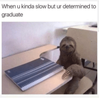"""<p>I was gifted some stock in this meme, can I get an appraisal, please? via /r/MemeEconomy <a href=""""http://ift.tt/2nTplzO"""">http://ift.tt/2nTplzO</a></p>: When u kinda slow but ur determined to  graduate <p>I was gifted some stock in this meme, can I get an appraisal, please? via /r/MemeEconomy <a href=""""http://ift.tt/2nTplzO"""">http://ift.tt/2nTplzO</a></p>"""