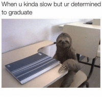 When U, Slow, and Kinda: When u kinda slow but ur determined  to graduate