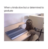 Memes, 🤖, and Determinism: When u kinda slow but ur determined to  graduate If this isn't me idk what is 😂