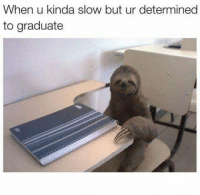 Oldie but Goldie and most definitely feeling it right now: When u kinda slow but ur determined  to graduate Oldie but Goldie and most definitely feeling it right now