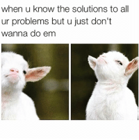Funny, Aed, and Solutions: when u know the solutions to al  ur problems but u just don't  wanna do em I'm a baaaaaaaaad bih😑