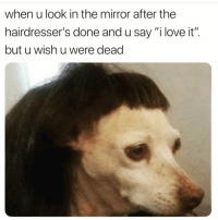 "Funny, Love, and Mirror: when u look in the mirror after the  hairdresser's done and u say ""i love it"".  but u wish u were dead This happened to me before 😰"