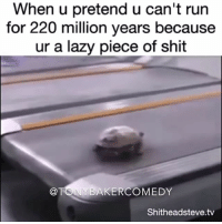 Lazy, Memes, and Treadmill: When u pretend u can't run  for 220 million years because  ur a lazy piece of shit  TONY BAKER COMEDY  Shitheadsteve.tv Tony Baker as the Turtle doin the best he can on the treadmill. I did not write the video caption. TonyBakerVoiceovers