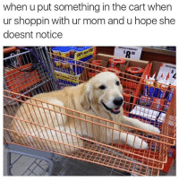 Funny, Moms, and Pop: when u put something in the cart when  ur shoppin with ur mom and u hope she  doesnt notice  98 I was always trying to sneer pop tarts in there HowiFeelWhen