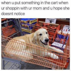 Assuming things that you think your mother isn't familiar with.: when u put something in the cart when  ur shoppin with ur mom and u hope she  doesnt notice Assuming things that you think your mother isn't familiar with.