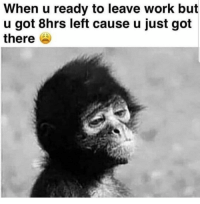 Instagram, Memes, and Omg: When u ready to leave work but  u got 8hrs left cause u just got  there Omg @femalesaying.s is the FREAKIEST 💦👅 page on Instagram 💦 @femalesaying.s