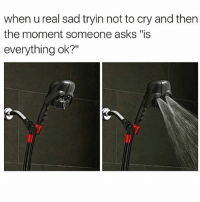 """Funny, Memes, and Sad: when u real sad tryin not to cry and then  the moment someone asks """"is  everything ok?"""" SarcasmOnly"""