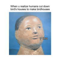 Birds, Classical Art, and Down: When u realize humans cut down  bird's houses to make birdhouses  y tho Stop birdhousing
