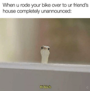 *friendship noises*: When u rode your bike over to ur friend's  house completely unannounced:  Hi bich *friendship noises*