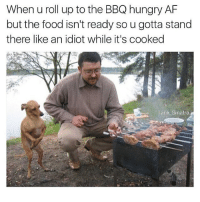 When u roll up to the BBQ hungry AF  but the food isn't ready so u gotta stand  there like an idiot while it's cooked  Tank Sinatra @tank.sinatra I fucking love this 😩😩 (and BBQ)