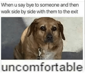 When you say bye to relatives by ImDavid0 FOLLOW HERE 4 MORE MEMES.: When u say bye to someone and then  walk side by side with them to the exit  uncomfortable When you say bye to relatives by ImDavid0 FOLLOW HERE 4 MORE MEMES.