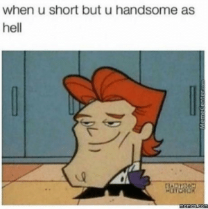Mean, Hell, and Handsome: when u short but u handsome as  hell i mean i'm short but that's it