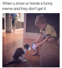 @CABBAGECATMEMES 😩: When u show ur homie a funny  meme and they don't get it  Cabbage CatMemes @CABBAGECATMEMES 😩
