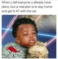 Af, Lit, and Memes: When u tell everyone u already have  plans, but ur real plan is to stay home  and get lit AF with the cat