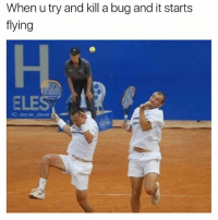 Memes, 🤖, and Bug: When u try and kill a bug and it starts  flying  H.  ELES  IG: davie dave Me