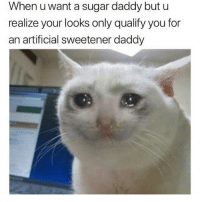 Lazy, Lol, and Memes: When u want a sugar daddy but u  realize your looks only qualify you for  an artificial sweetener daddy later in the day im gonna do a video spam so turn my post notifs on ive been saving amazing videos for weeks lOl it just takes forever to save and im lazy