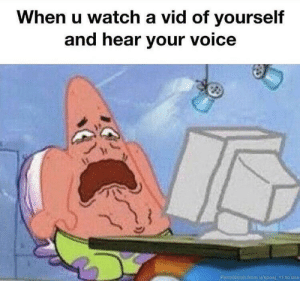 Be Like, Dank, and Memes: When u watch a vid of yourself  and hear your voice  Permission from u/sposi 11 to use It really do be like that by SlowBro_09 MORE MEMES
