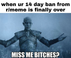 Meme, Reddit, and Day: when ur 14 day ban from  r/meme is finally over  MISS ME BITCHES? Cause I did