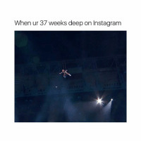 memes are taking over: When ur 37 weeks deep on Instagram memes are taking over