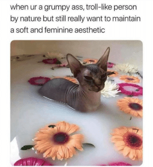 😂😂😂: when ur a grumpy ass, troll-like person  by nature but still really want to maintain  a soft and feminine aesthetic 😂😂😂