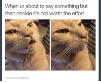 MeIRL, Source, and Not Worth the Effort: When ur about to say something but  then decide it's not worth the effort  Source: onlytwitterpics meirl
