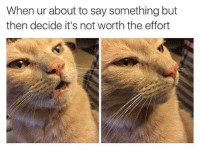 MeIRL, Not Worth the Effort, and Say Something: When ur about to say something but  then decide it's not worth the effort Meirl