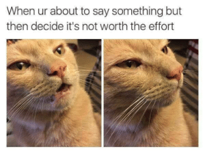 Meirl by psychoschiz MORE MEMES: When ur about to say something but  then decide it's not worth the effort Meirl by psychoschiz MORE MEMES