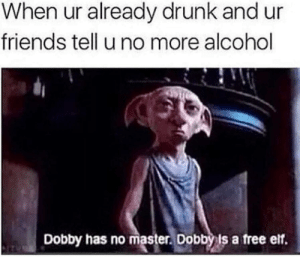 I have no master: When ur already drunk and ur  friends tell u no more alcohol  Dobby has no master. Dobby ls a free elf. I have no master