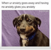 No Anxiety