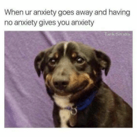 Love, Memes, and Anxiety: When ur anxiety goes away and having  no anxiety gives you anxiety  Tank Sinatra It's just so unfair | Mental Health | Mental Health Memes | Humor | Mental Illness | Anxiety | Love What's There | Invisible Illness | Illness not Weakness | Anxiety Memes | Break the Stigma |