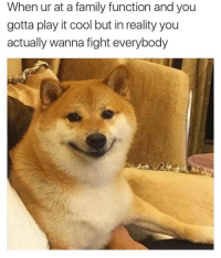 Family, Funny, and Memes: When ur at a family function and you  gotta play it cool but in reality you  actually wanna fight everybody Funny Memes. Updated Daily! ⇢ FunnyJoke.tumblr.com 😀