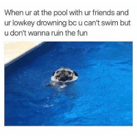 Friends, Memes, and Pool: When ur at the pool with ur friends and  ur lowkey drowning bc u can't swim but  u don't wanna ruin the fun Tss 🤦🏽‍♂️💯🏌🏽