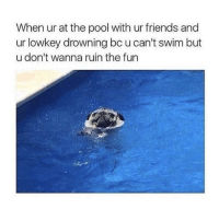 Friends, Memes, and Pool: When ur at the pool with ur friends and  ur lowkey drowning bc u can't swim but  u don't wanna ruin the fun i always feel like i need more memes even though i have thousands ugh