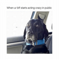 Crazy, Girl Memes, and Acting: When ur bff starts acting crazy in public uhhhh...
