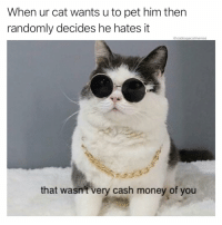 Money, Wtf, and Dank Memes: When ur cat wants u to pet him then  randomly decides he hates it  @cabbagecatmemes  that wasnt very cash money of you Wtf do u want