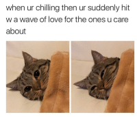 <p>Shoutout to the entire population</p>: when ur chilling then ur suddenly hit  w a wave of love for the ones u care  about <p>Shoutout to the entire population</p>