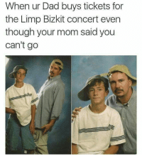 Memes, Heat, and 🤖: When ur Dad buys tickets for  the Limp Bizkit concert even  though your mom said you  can't go I don't know what this means maybe you do heated yyc whats a limpbizkit