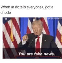 Fake, Memes, and News: When ur ex tells everyone u got a  chode  CShitheadsteve  You are fake news. Very sad!