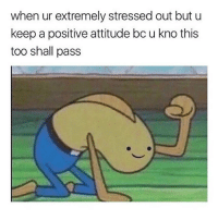 Tumblr, Blog, and Attitude: when ur extremely stressed out but u  keep a positive attitude bc u kno this  too shall pass anxietyproblem:Follow us @anxietyproblem