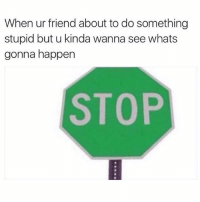 Girl Memes, Snap, and Friend: When ur friend about to do something  stupid but u kinda wanna see whats  gonna happen  STOP Gotta do it for the snap @mybestiesays