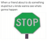 <p>I'm that stupid friend. But I'm not complaining.</p><p><b><i>You need your required daily intake of memes! Follow <a>@nochillmemes</a> for help now!</i></b><br/></p>: When ur friend about to do something  stupid but u kinda wanna see whats  gonna happen  STOP  8 <p>I'm that stupid friend. But I'm not complaining.</p><p><b><i>You need your required daily intake of memes! Follow <a>@nochillmemes</a> for help now!</i></b><br/></p>