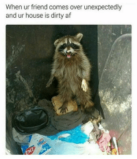 It's not usually this messy I swear 😬 @openlygayanimals has an awesome meme page. Follow now if you aren't already: When ur friend comes over unexpectedly  and ur house is dirty af It's not usually this messy I swear 😬 @openlygayanimals has an awesome meme page. Follow now if you aren't already