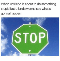 Memes, 🤖, and Friend: When ur friend is about to do something  stupid but u kinda wanna see what's  gonna happen  STOP Stop 👀 goodgirlwithbadthoughts 💅🏽
