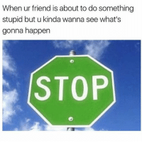 👀 goodgirlwithbadthoughts 💅🏽: When ur friend is about to do something  stupid but u kinda wanna see what's  gonna happen  STOP 👀 goodgirlwithbadthoughts 💅🏽